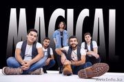 Музыкальная группа MAGICAL Live Music.